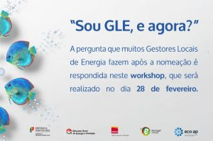 Workshop GLE