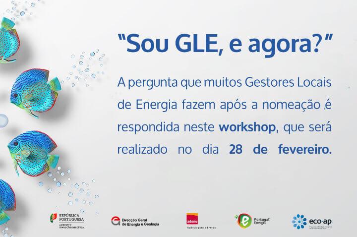 """Workshop para Gestores Locais de Energia """"Sou GLE, e agora?"""""""