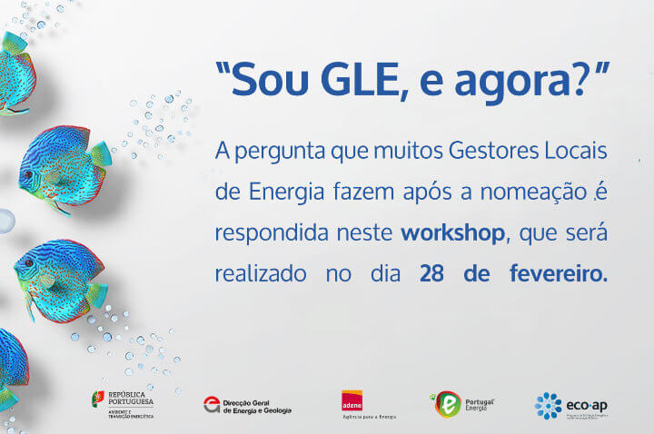 Workshop GLE