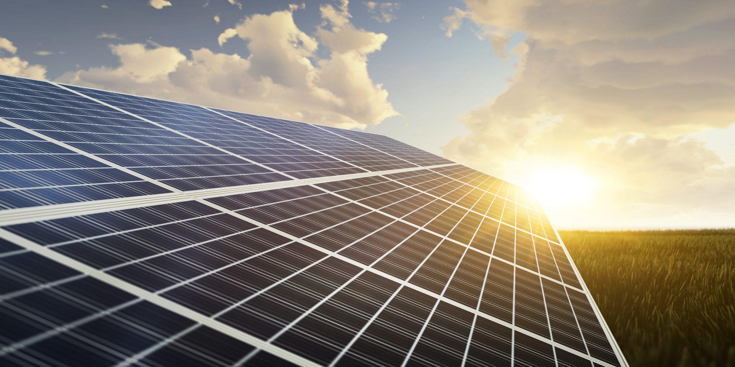 Produção de renováveis atinge novo máximo histórico em fevereiro